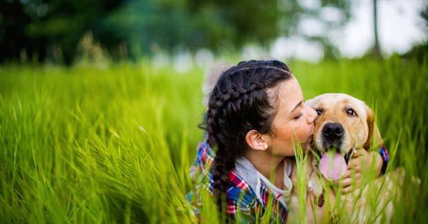 Nasce alle porte di Milano la prima ludoteca per cani e umani