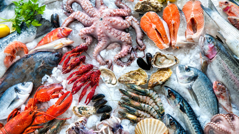 Il fast food è a base di pesce, la nuova tendenza del gusto dilaga in Italia