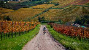Via-Romea-Germanica-Umbria
