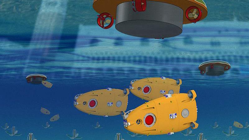 A Venezia ci sono dei pesci robot che nuotano nella Darsena