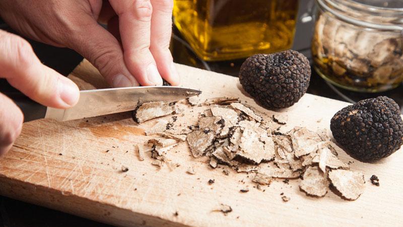 Siena, il tartufo che vuole diventare Patrimonio Unesco