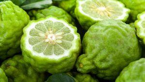 Alla scoperta dell'agrume calabrese più pregiato del mondo: il bergamotto