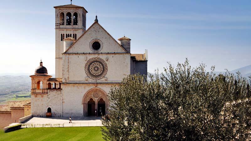 Gli ulivi di Assisi e Spoleto patrimonio Fao - 1