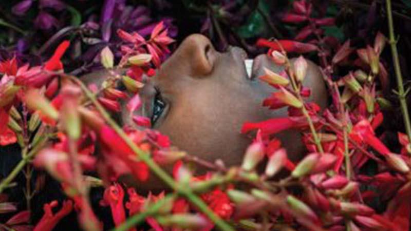 Dal 5 al 7 ottobre Cernobbio si trasforma in un grande giardino con Orticolario