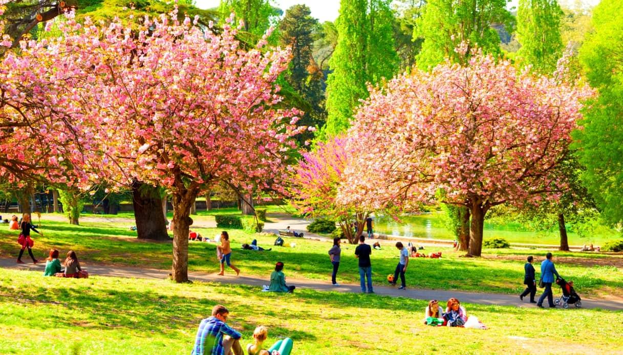 Parco a Roma