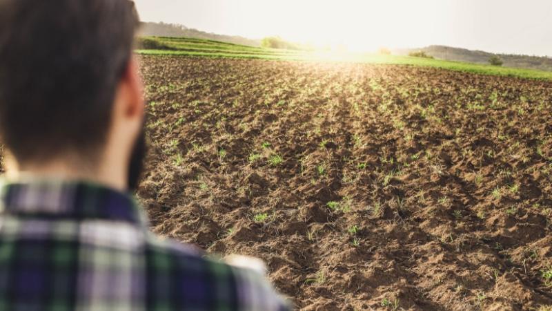 Trennei agricoli in vendita in tutta Italia