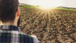 terreni agricoli vendita