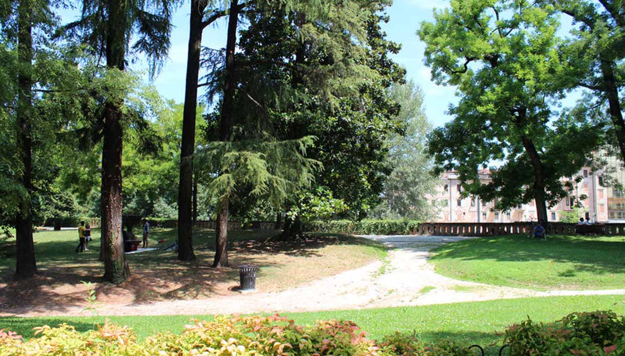 Padova diventerà un bosco urbano: in arrivo 20mila alberi in città