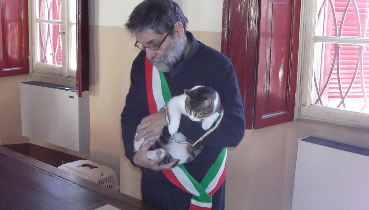 Gravellona Lomellina, il paese dove un gatto celebra i matrimoni