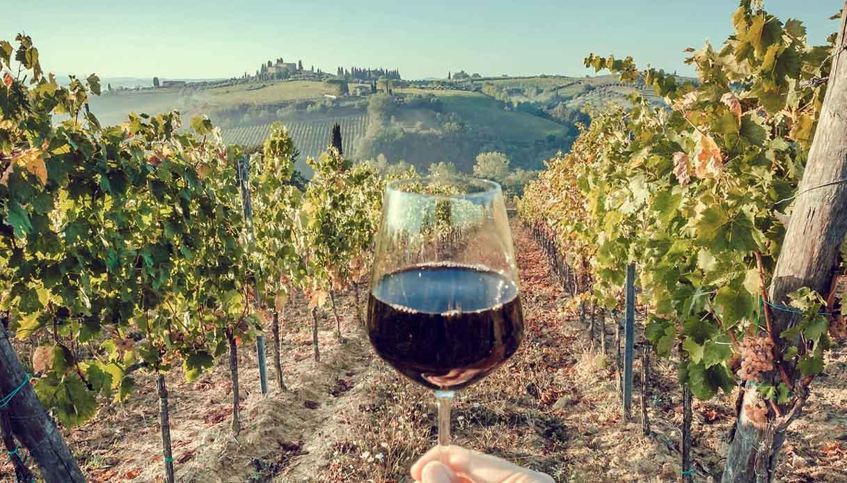 I migliori vini invernali sotto i 20 euro per il New York Times