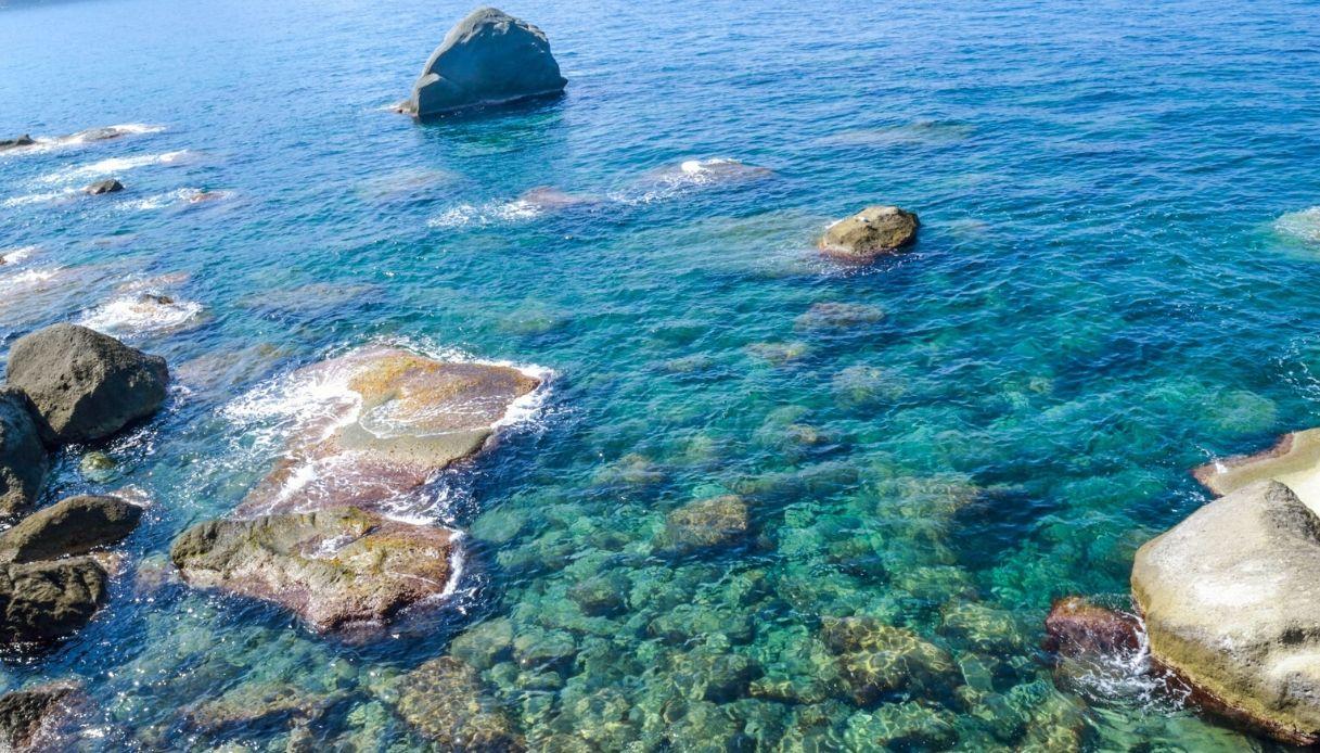 La Posidonia di Ischia svela come sarà il mare del futuro