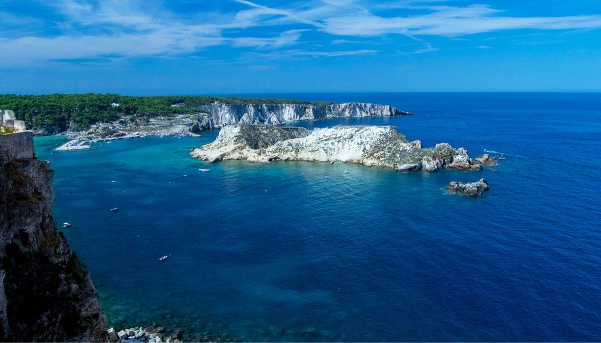 Tremiti, la foresta di corallo nero conquista National Geographic