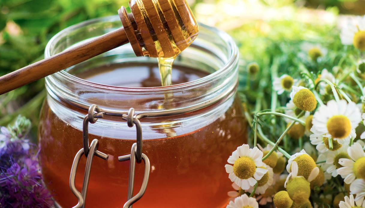Miele: le tre regioni italiane in testa per numero di alveari