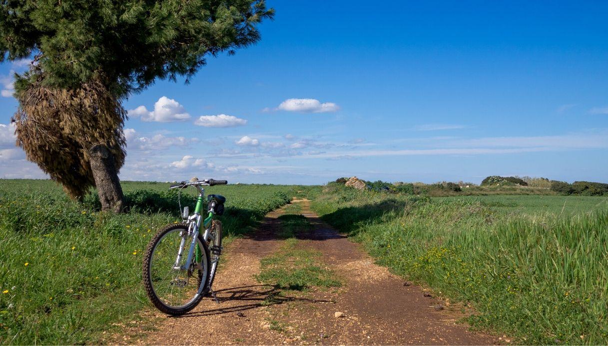 Dal Nord al Sud d'Italia, isole comprese, ecco quattro itinerari consigliati per scoprire il Bel Paese in bicicletta in vista delle vacanze estive 2020