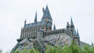 Castello nel Pavese diventa Hogwarts: campus Harry Potter style