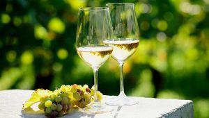 I migliori vini italiani per l'estate 2020