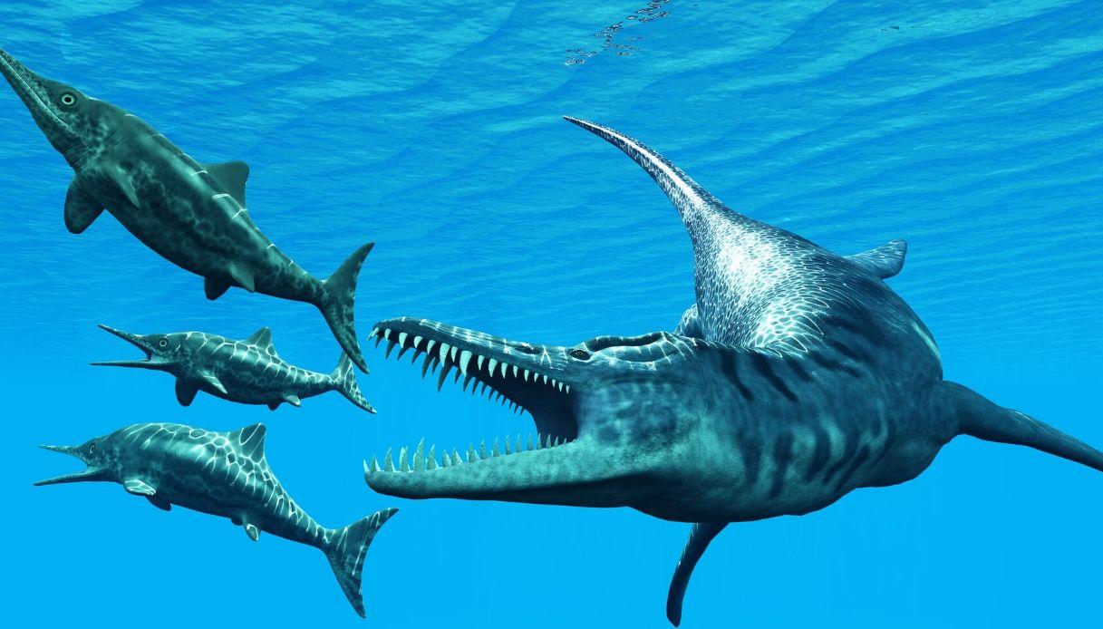 Ittiosauro di Varese: sua la più antica pinna dorsale di rettile