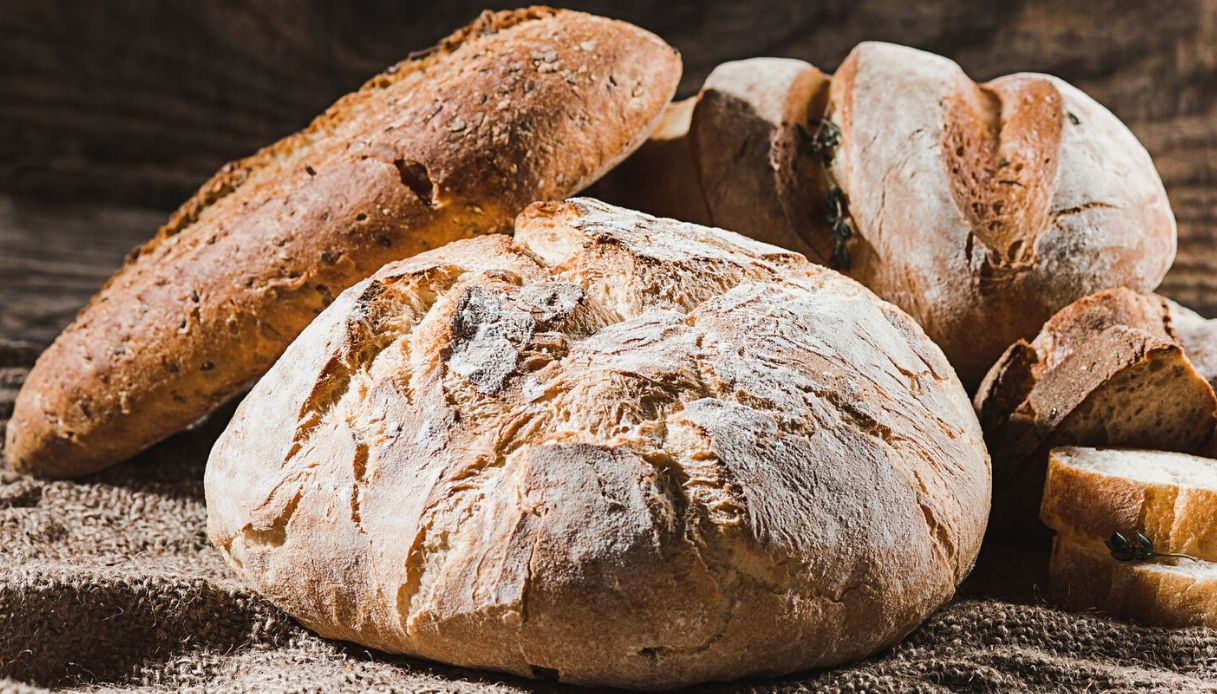 Pane e Panettieri d'Italia 2021: tutti i premiati