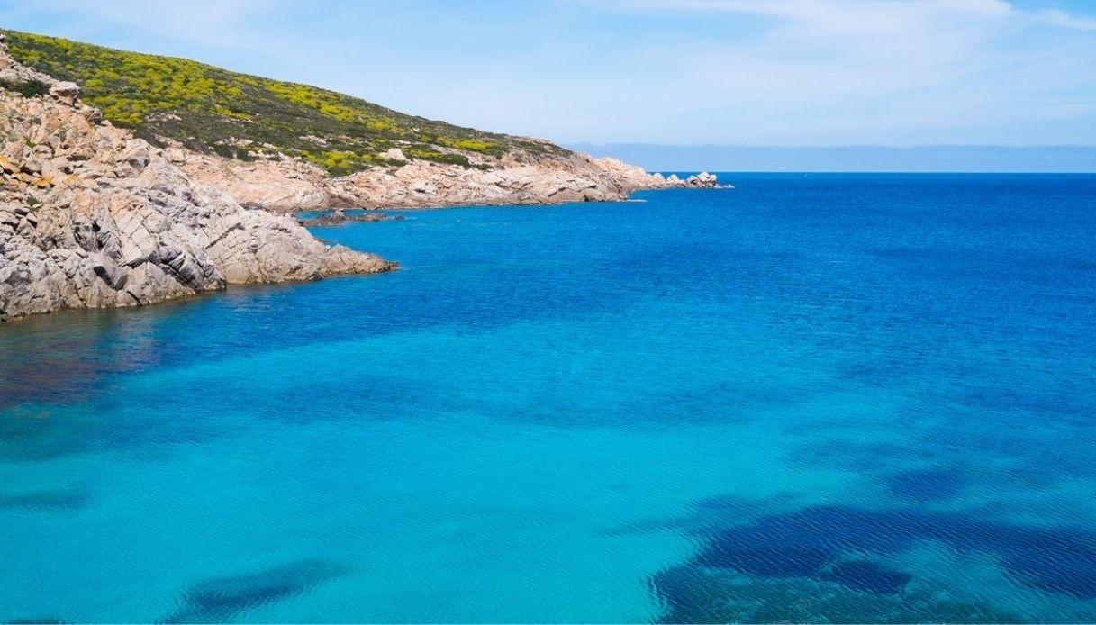 All'Isola dell'Asinara è stata avvistata una balenottera
