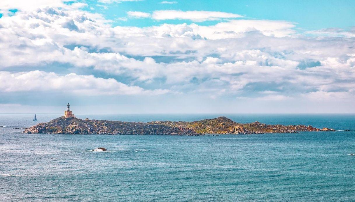 Sardegna, risolto il mistero dello squalo senza pelle né denti