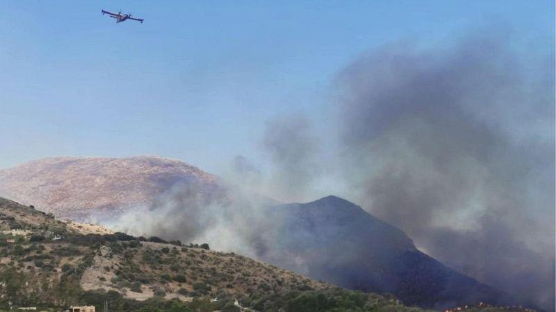 Emergenza incendi in Sicilia: in fiamme la riserva dello Zingaro