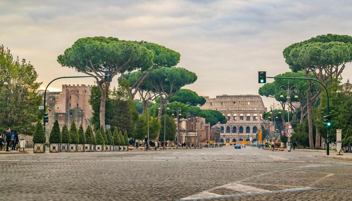 """A Roma scatta l'allarme """"cocciniglia tartaruga"""""""