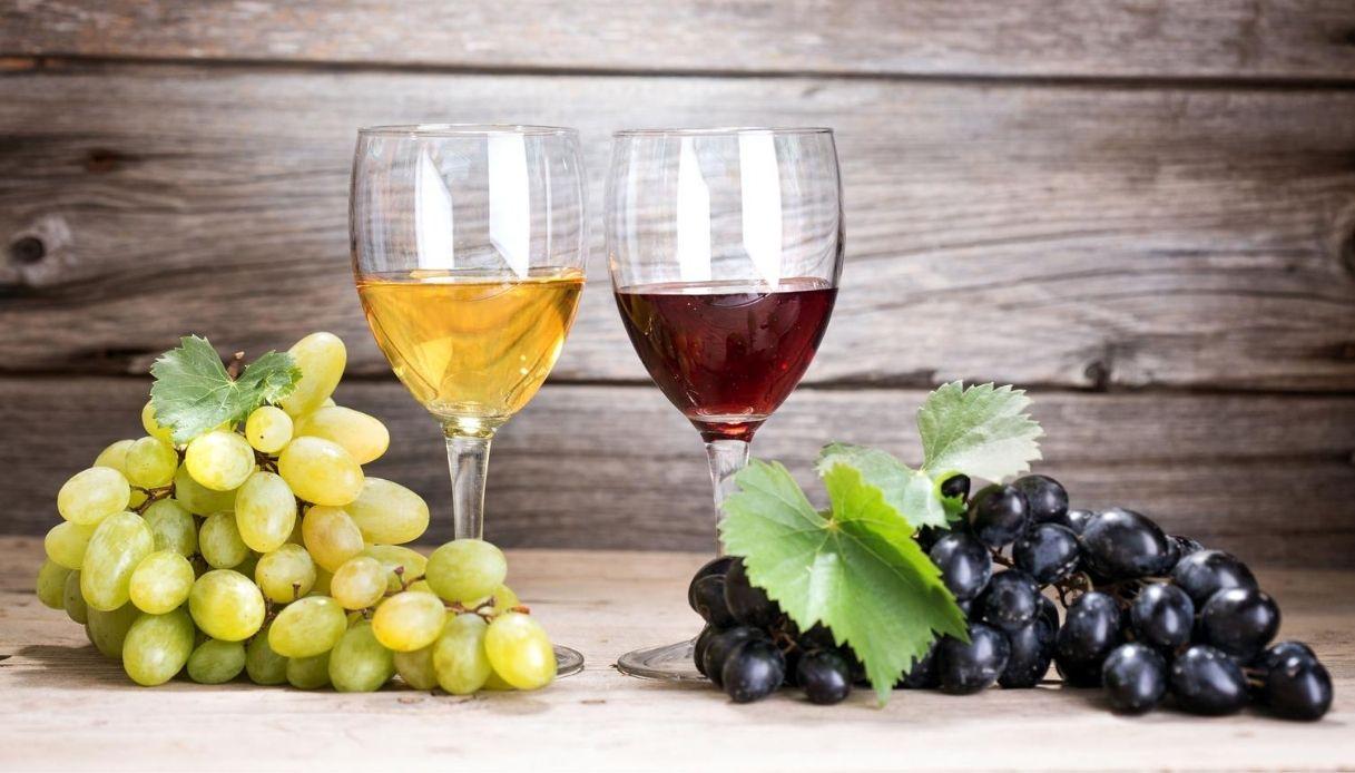 The WineHunter Award: migliori vini d'Italia regione per regione