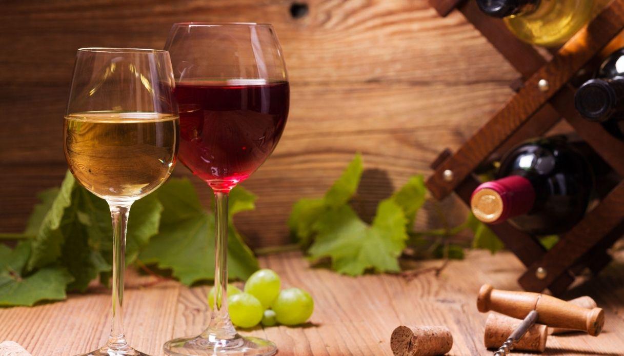 I migliori vini bianco e rosso del 2021 in Italia