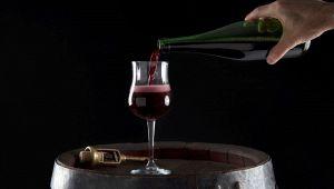I vini più popolari d'Italia