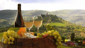 Tutti i Vini Top d'Italia, regione per regione: la nuova guida