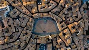 Piazza del Campo: Siena