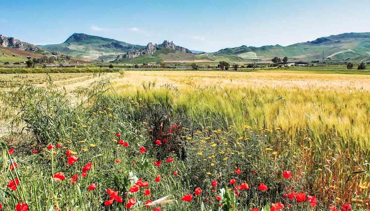 In Sicilia nasce il Parco dello Stile di Vita Mediterraneo