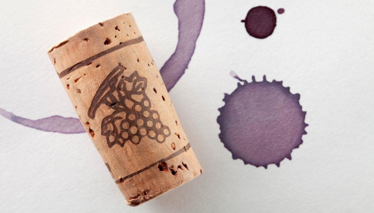A Bondeno scoperto il vino più antico d'Italia