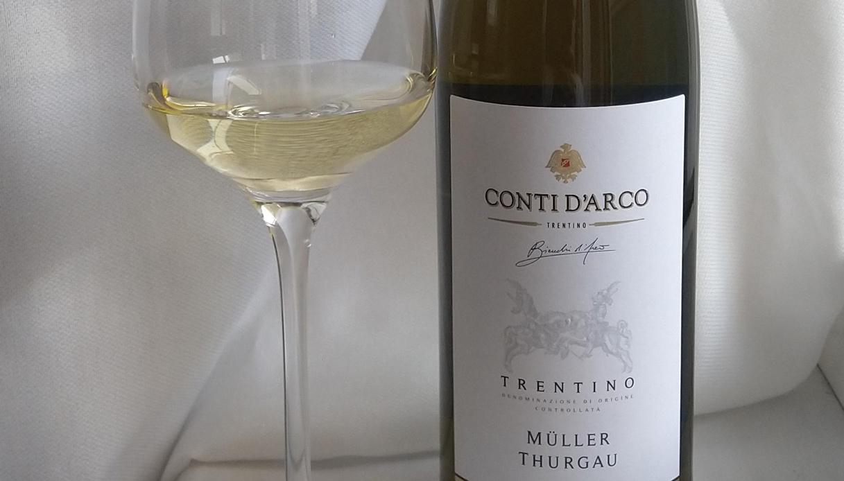 I migliori vini del Trentino
