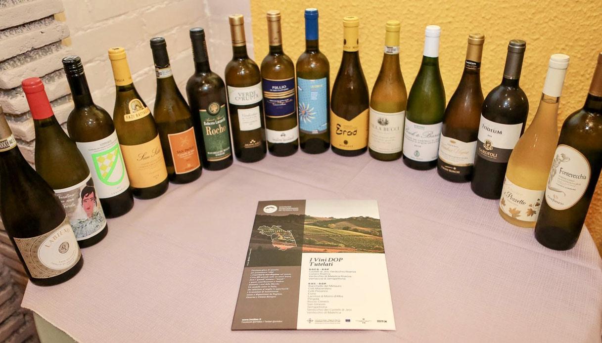 I migliori vini delle Marche