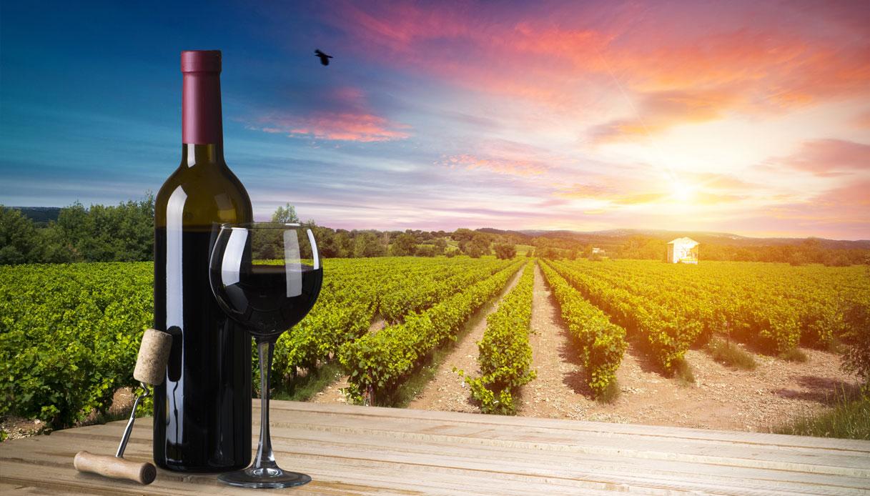 I migliori vini della Toscana