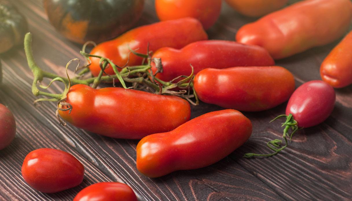 Scatta la guerra del pomodoro tra Puglia e Campania