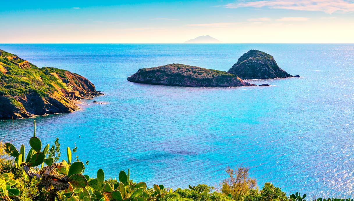 Un'anfora romana è stata scoperta sui fondali dell'isola d'Elba