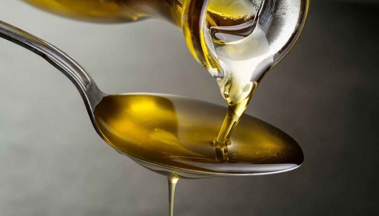 Tutti i premi di Sol d'Oro 2021: ecco i migliori oli d'Italia
