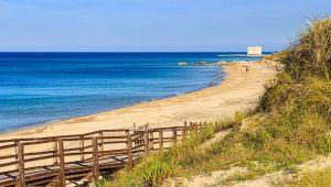 Puglia, allarme alga tossica: la spiaggia di Torre Canne