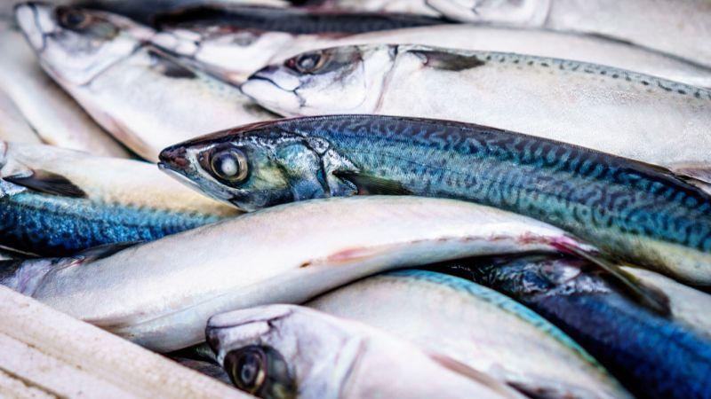 Riconoscere il pesce fresco