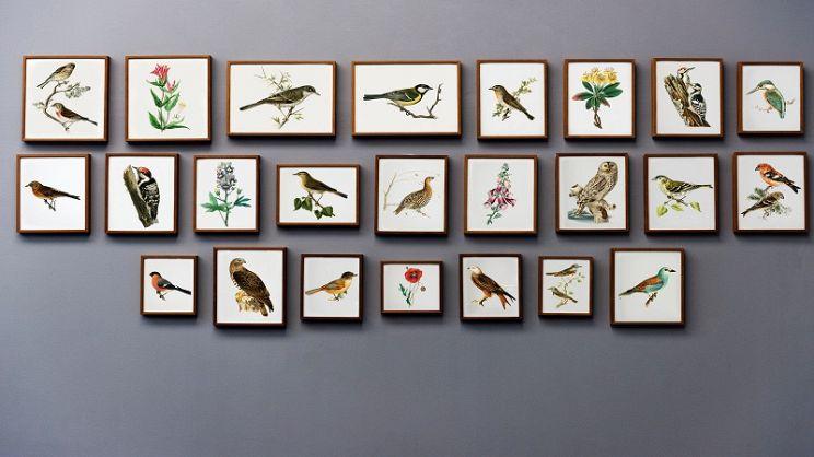 Come decorare le pareti di casa? | PagineGialle Magazine
