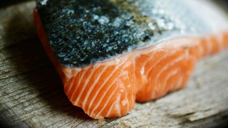 Pesci Grassi Quali Sono I Pesci Che Contengono Più Colesterolo