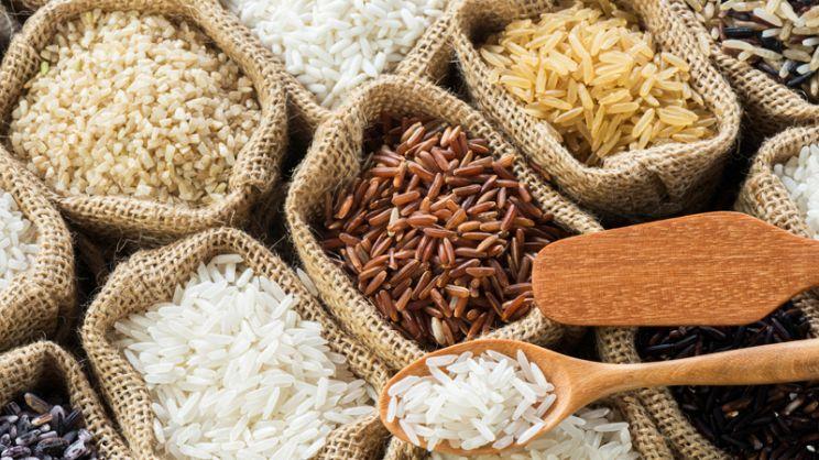 Risultati immagini per tipi di riso
