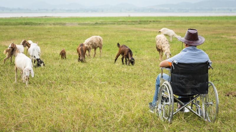 consigli sugli agriturismi per disabili