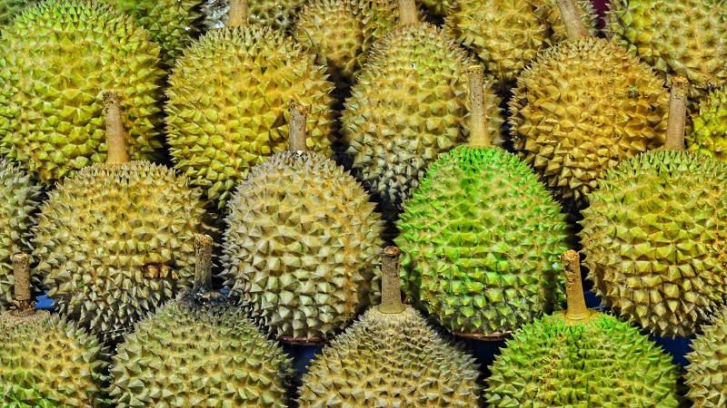 durian: il frutto che puzza