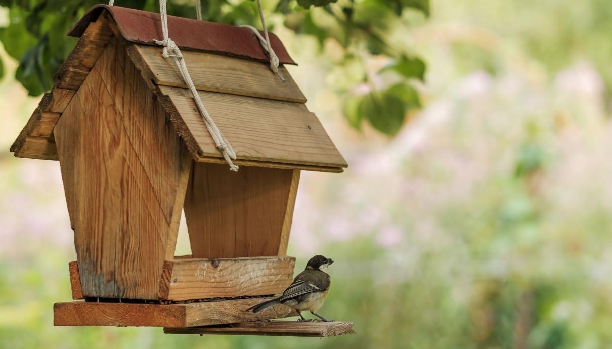 Idee per una casetta per gli uccelli