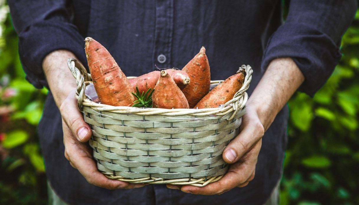 Come cucinare la patate dolci