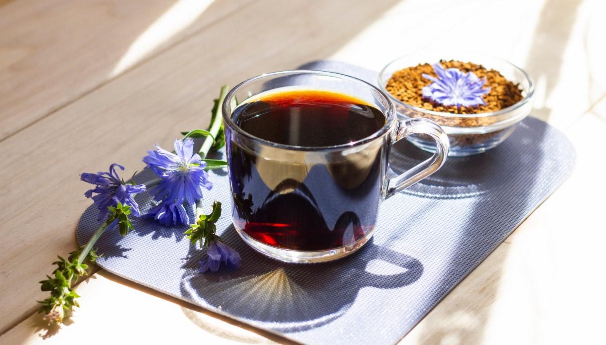 Caffè di cicoria: le proprietà
