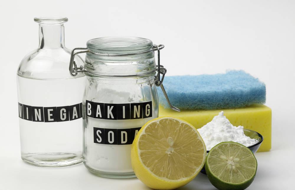 Disinfettante Bagno Naturale : Rimedi naturali per eliminare gli odori di fogna dal bagno